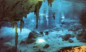 diving in Cozumel